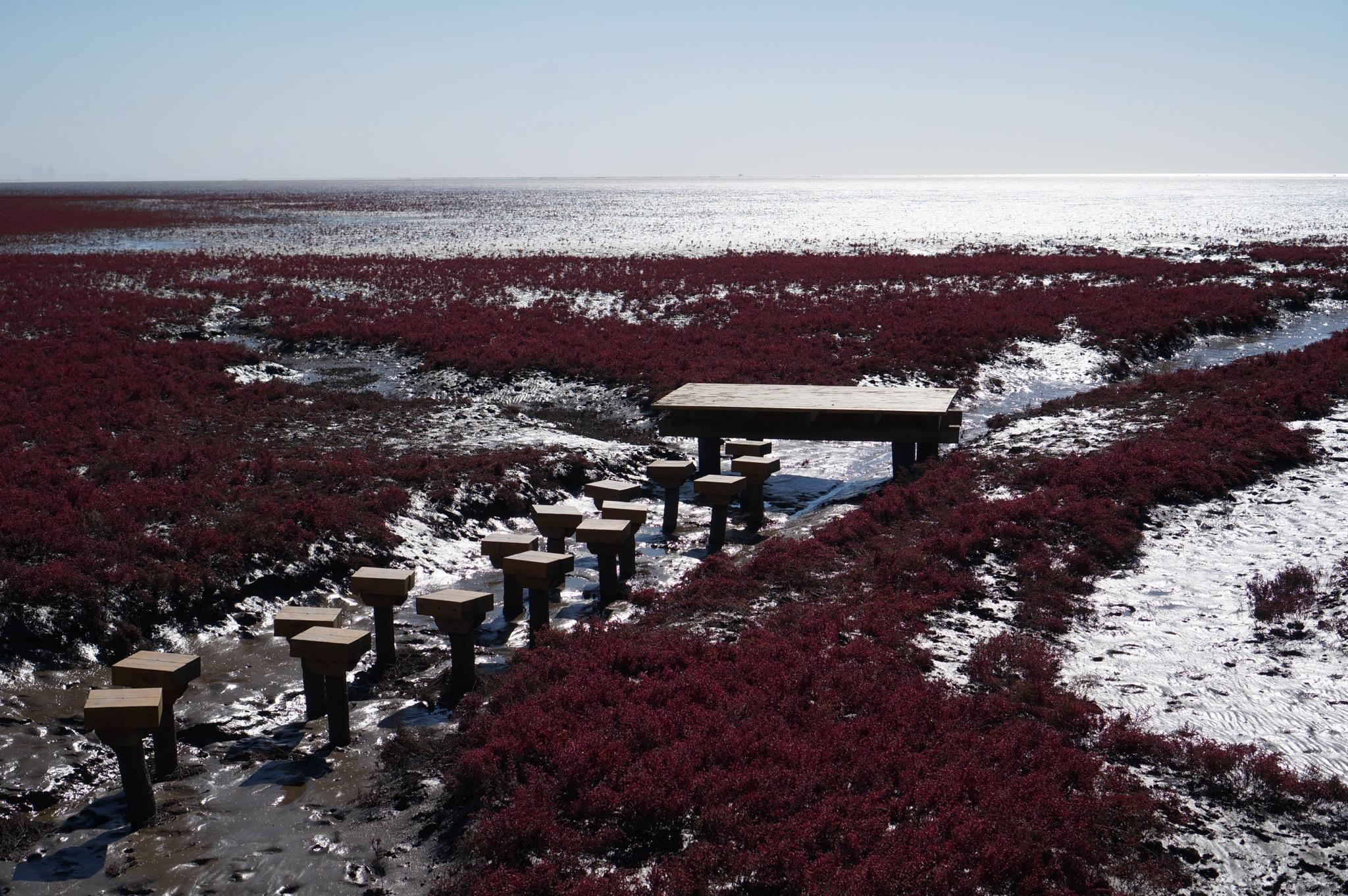 逆光下的红海滩