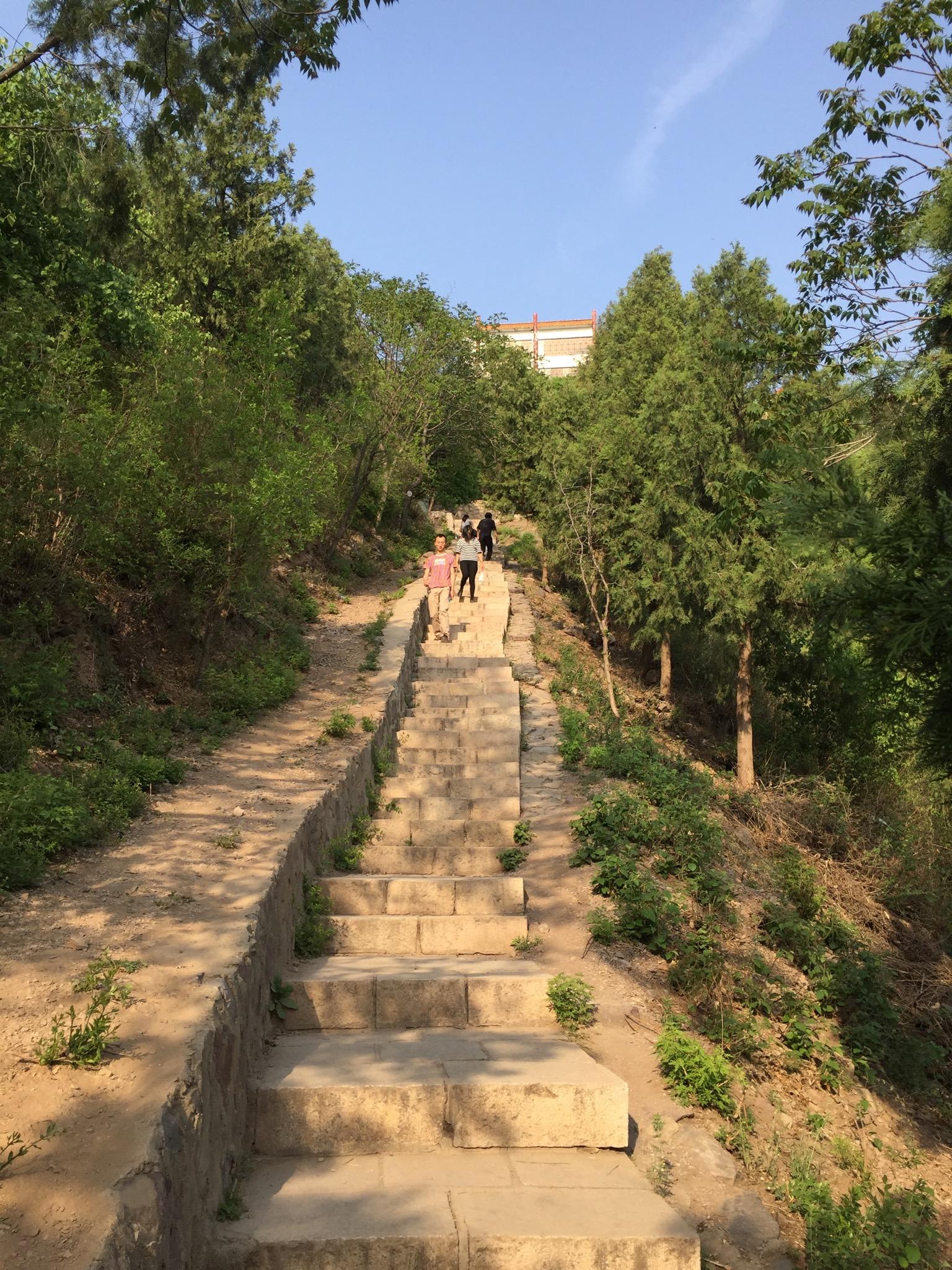 1299级登山台阶