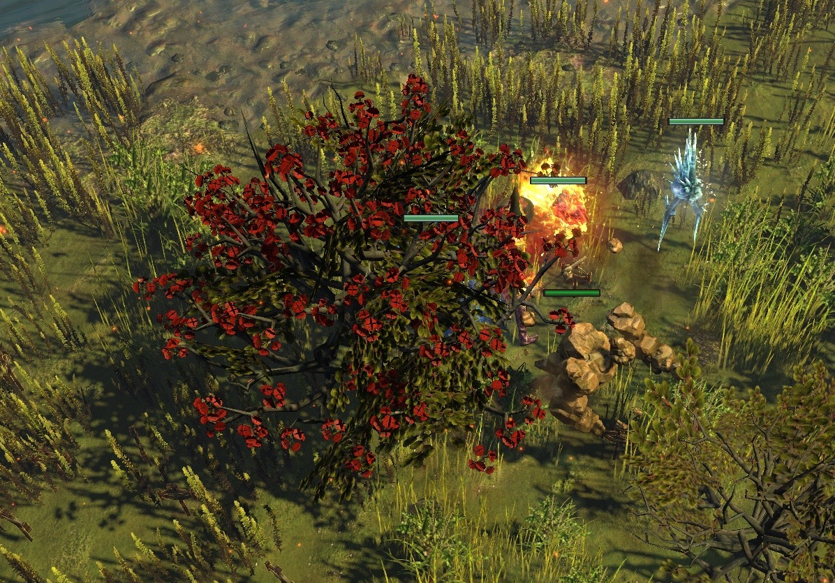 卡鲁要塞的树